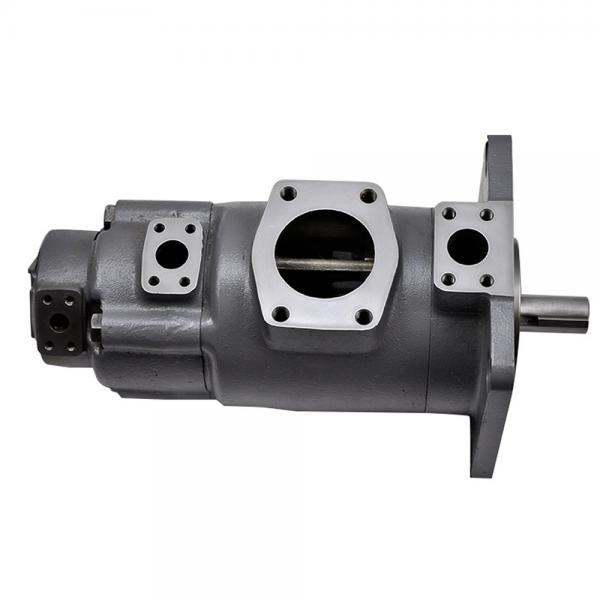 Yuken  PV2R12-25-53F-RAA-40 Double Vane pump #1 image