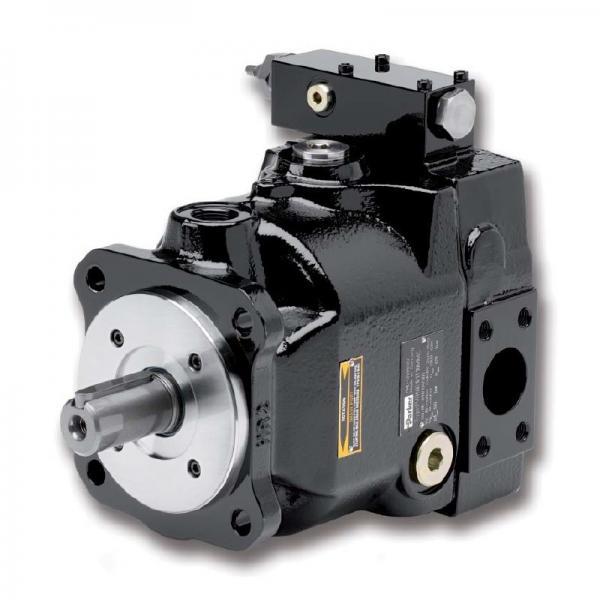 PAKER 50T-17-FR-1 Piston Pump #1 image