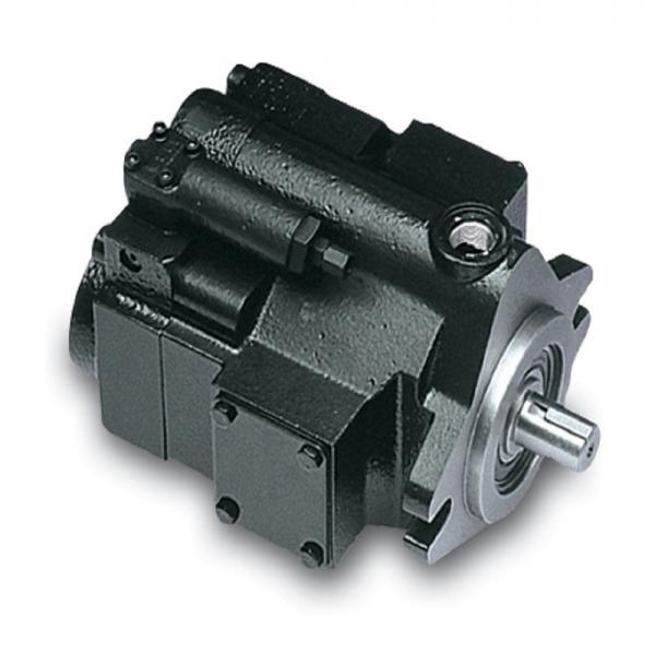 PAKER 50T-17-FR-1 Piston Pump #2 image